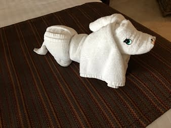 Towel Sculpture Dog, Hacienda Tres Rios, Playa del Carmen, Mexico