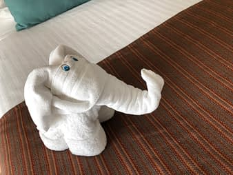 Towel Sculpture Elephant, Hacienda Tres Rios, Playa del Carmen, Mexico