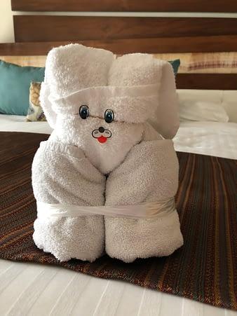 Towel Sculpture Rabbit, Hacienda Tres Rios, Playa del Carmen, Mexico