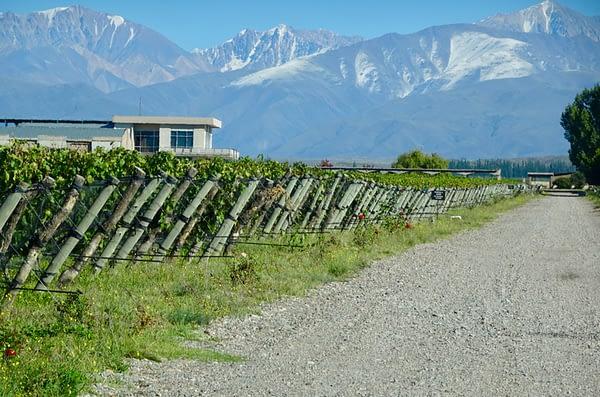 Domaine Bousquet, Uco Valley, Mendoza, Argentina