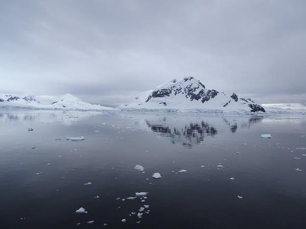 Morning, Paradise Bay, Antarctica