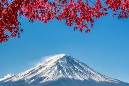 Mount Fuji with Cherry Blossoms, Hakone, Japan